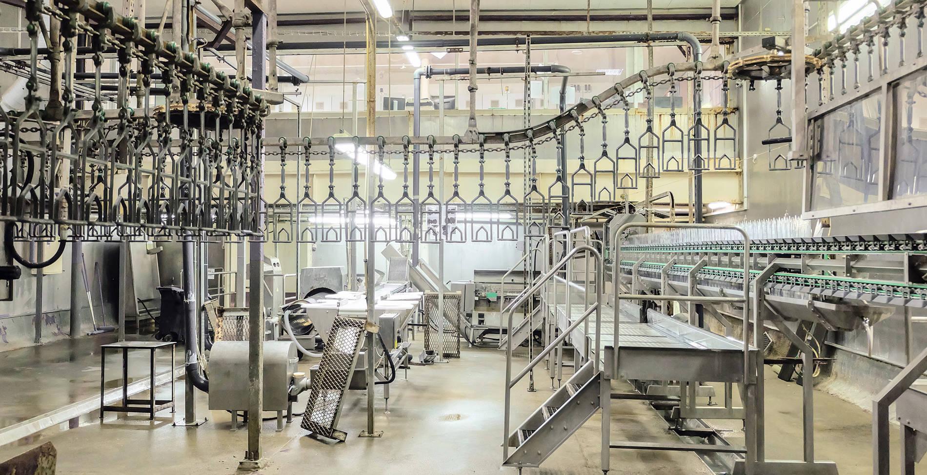 Ενίσχυση πωλήσεων, αύξηση παραγωγικότητας και αναβάθμιση προϊόντων για τη «Νίκας»