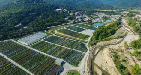Responsible Mining και Βιώσιμη Ανάπτυξη στις προτεραιότητες της Ελληνικός Χρυσός