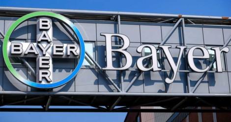 Bayer Ελλάς: Στηρίζει την καινοτομία μέσω των Elevate Greece και Level Up